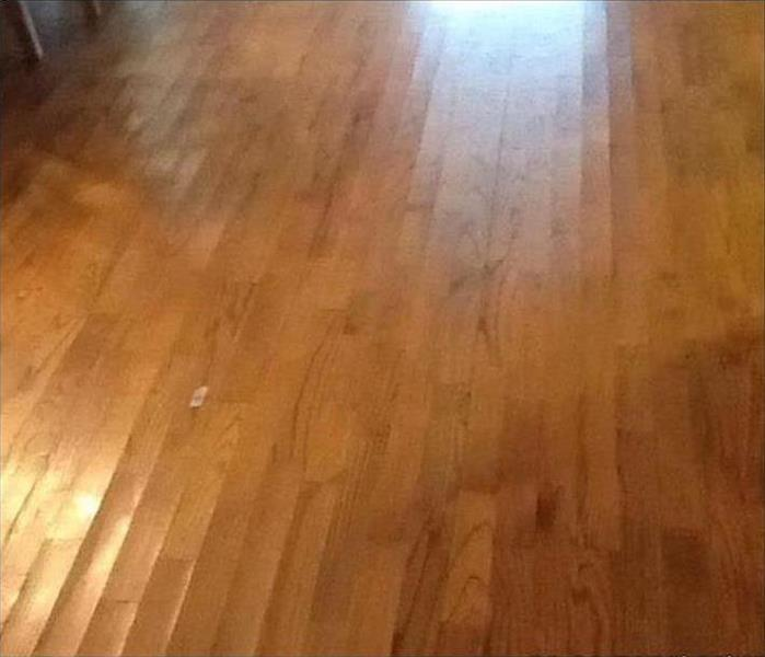 visible cupping on hardwood floor boards