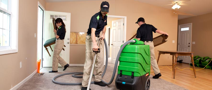Los Angeles, CA cleaning services